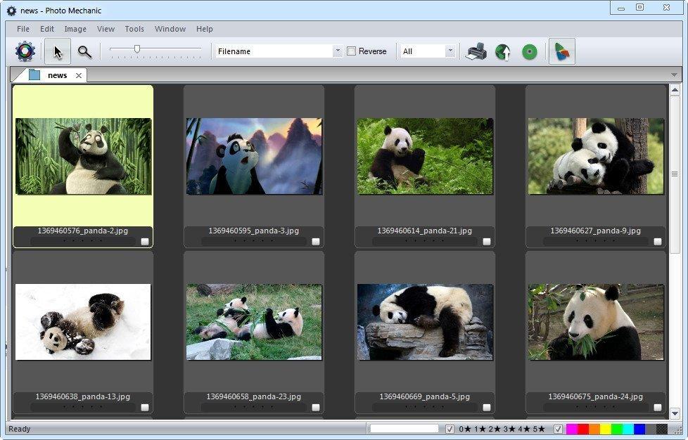 Photo Mechanic 6.0 – Photo Editing and Personalization Program